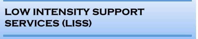 Low Intensity Support Services