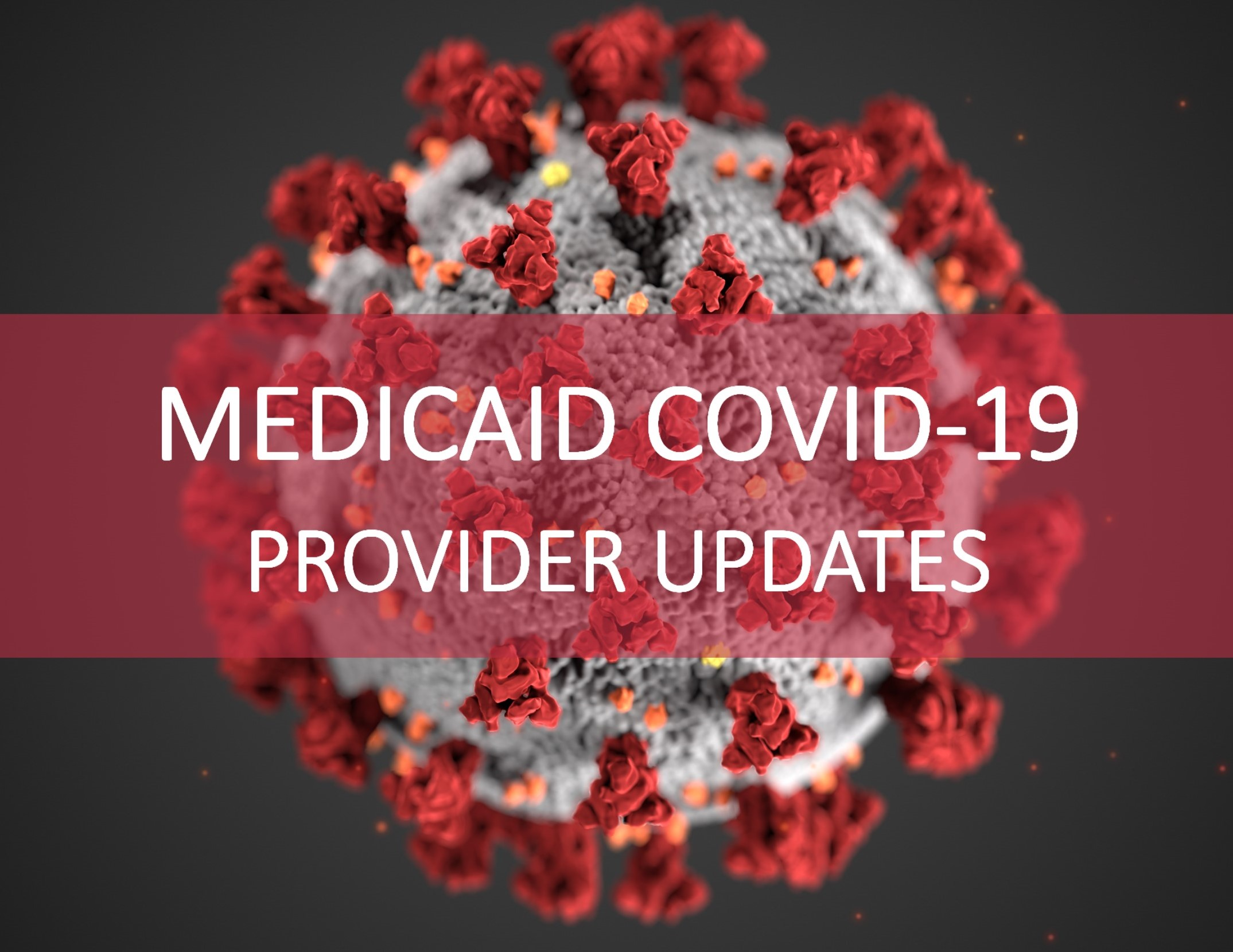 Medicaid COVID-19 Provider Updates crop for home page.jpg