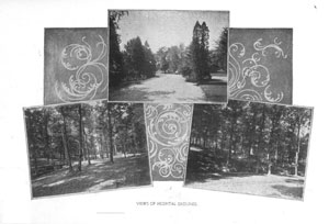 Early Views of the Grounds of Spring Grove